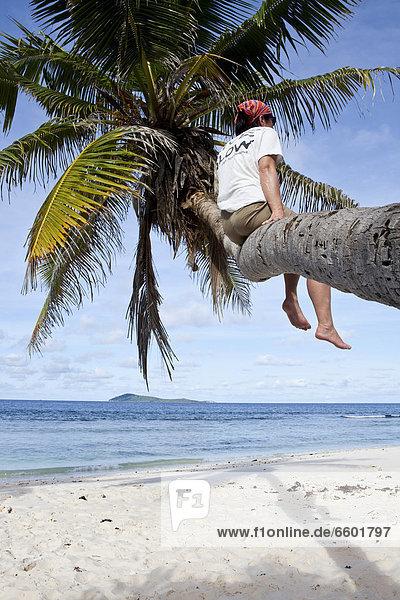 Frau sitzt auf einer Kokospalme  Anse Fourmis  Insel La Digue  Mahe  Seychellen  Afrika  Indischer Ozean