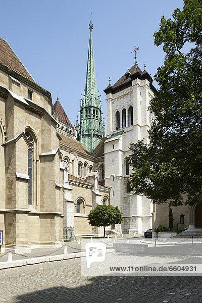 Kathedrale St Peter  Genf  Schweiz  Europa