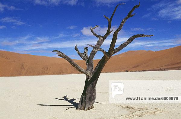 Wüste Sand Düne Namib