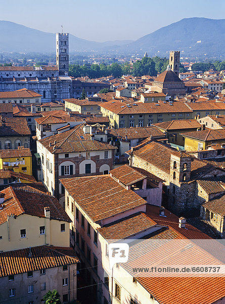 Rooftops Of Lucca  Aerial View