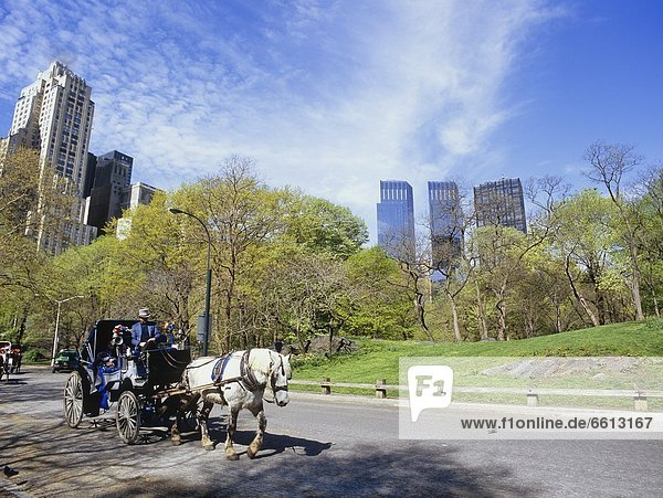 Time Warner Towers and horse drawn carriage