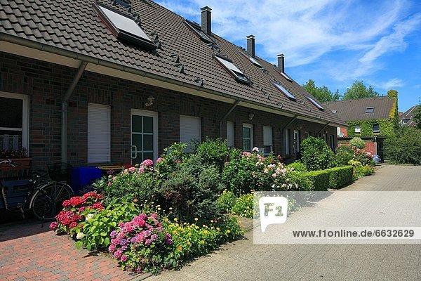 Blumenbeet Gebäude Nachbarschaft Nordrhein-Westfalen Rheinland Nordrhein-Westfalen