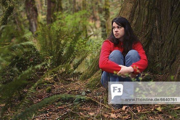 sitzend  Regenwald