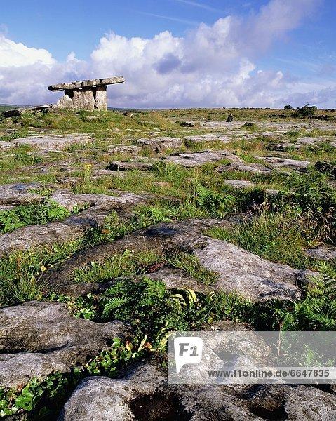 Clare County Irland Poulnabrone Dolmen Burren