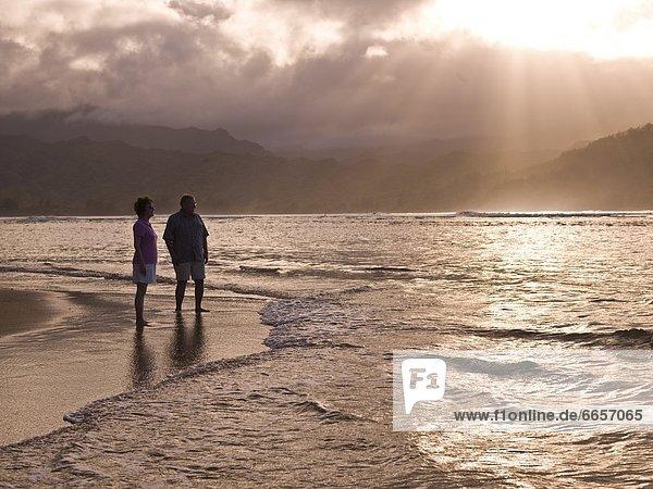 Vereinigte Staaten von Amerika  USA  Strand  Hawaii  Kauai
