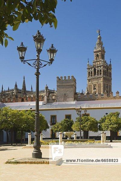 Hintergrund Kathedrale Andalusien Sevilla Spanien