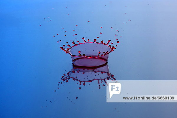 Mandatory Credit: Photo by Solent News / Rex Features (1339558f) A droplet of milk hitting water Splash These extraordinary images have certainly caused a splash - they capture the precise moment a tiny droplet of milk hits water. Photographer Ashley Sykes spends hours firing the coloured droplets at the water from a bottle suspended 12 inches above