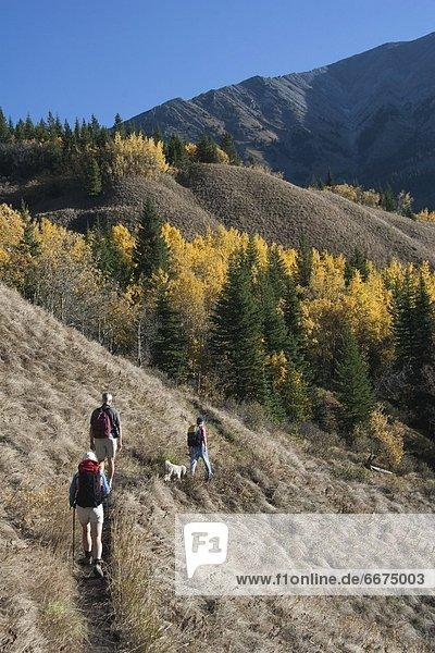 Berg  folgen  wandern  3