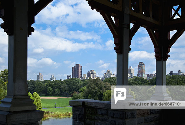 Central Park and Downtown New York