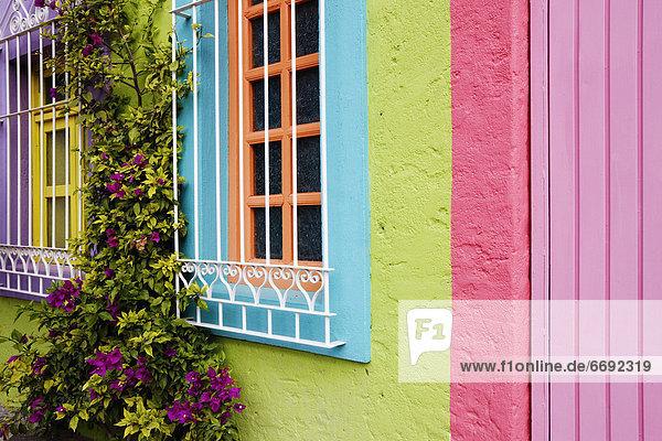 Colorful Walls
