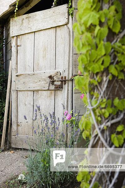 Tür Holz Garten