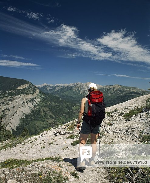 Hiking In The Rocky Mountains  Crowsnest Pass  Alberta  Canada
