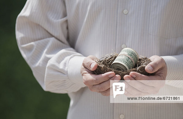 Hands holding a nest with money in it