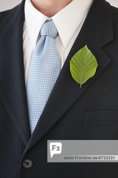 Geschäftsmann  Pflanzenblatt  Pflanzenblätter  Blatt  Revers Geschäftsmann ,Pflanzenblatt, Pflanzenblätter, Blatt ,Revers