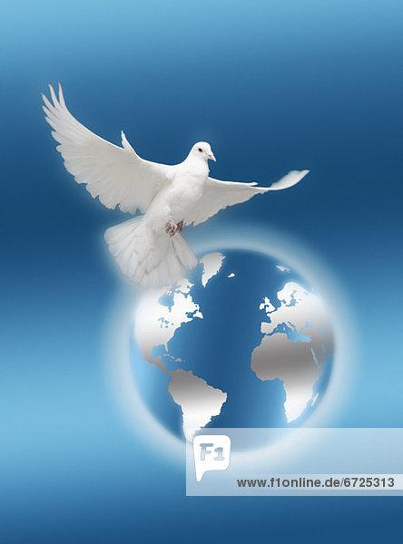 World freedom World freedom