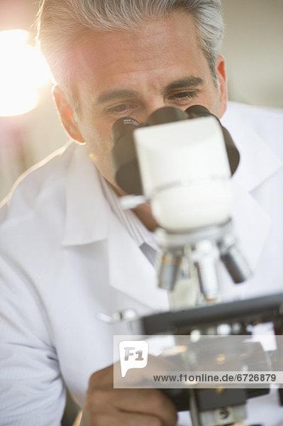 sehen  blättern  Forscher  Mikroskop