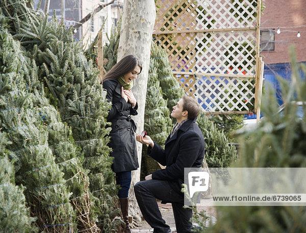 Mann  Freundin  Baum  Weihnachten