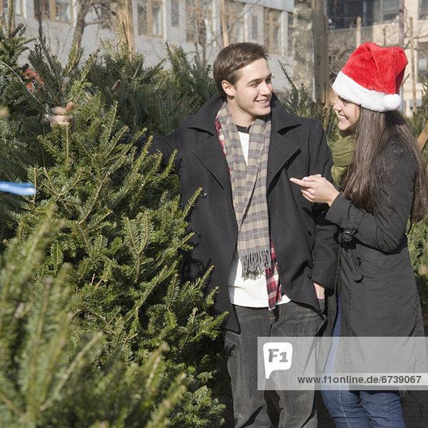 Weihnachtsbaum Tannenbaum kaufen