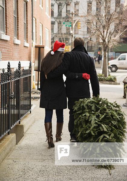 Städtisches Motiv Städtische Motive Straßenszene Straßenszene ziehen Weg Weihnachtsbaum Tannenbaum