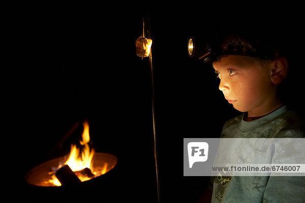 Inspektion Junge - Person Lampe British Columbia Marshmallow getoastet