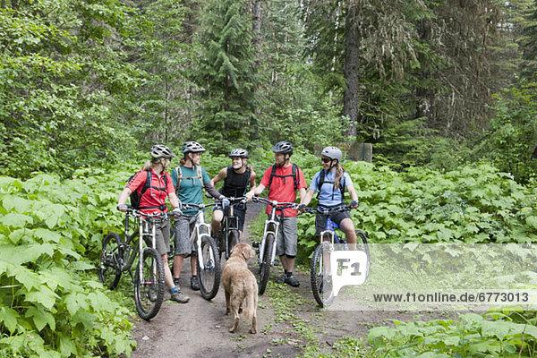 Berg  Fröhlichkeit  Mensch  5  Menschen  Menschengruppe  Menschengruppen  Gruppe  Gruppen  radfahren  Hund  Fernie  British Columbia  British Columbia  Kanada