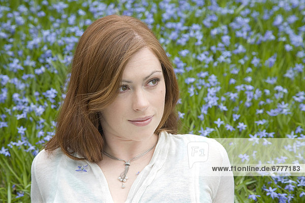 Frau  Blume  Feld  blau  rot  jung  Kanada  Ontario  Whitby