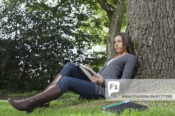 sitzend  Frau  Buch  Baum  unterhalb  jung  vorlesen