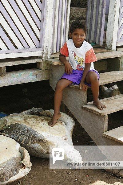 Wasserschildkröte Schildkröte Junge - Person jung Nicaragua
