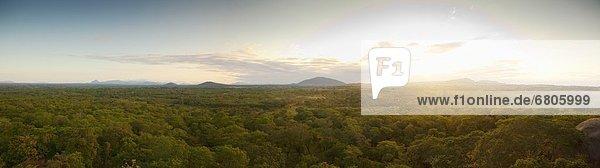 Baum  über  Ansicht  Landschaft  Afrika  Mosambik