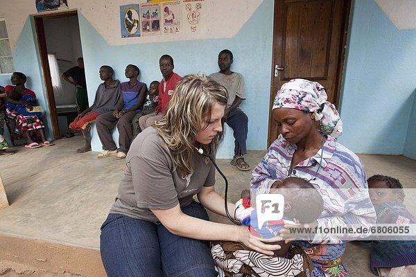 hoch  oben  Arzt  Gesundheitspflege  Prüfung  Reh  Capreolus capreolus  Afrika  Mosambik