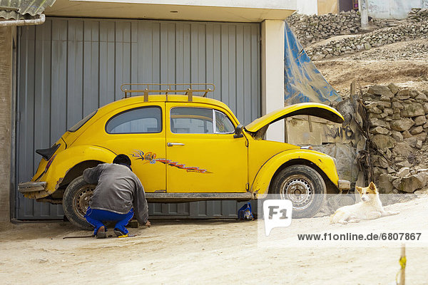 Mann  sitzend  arbeiten  Auto  gelb  Hund  nähern