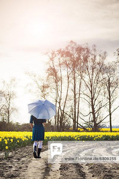 Vereinigte Staaten von Amerika  USA  Frau  Regenschirm  Schirm  Fernverkehrsstraße  Skagit Valley