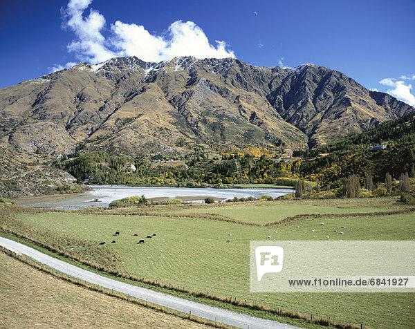 Berg  neuseeländische Südinsel  Neuseeland  Queenstown