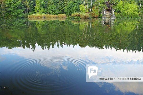 konzentrische Kreise  konzentrisch  Wellenring  Wellenringe  Bodenhöhe  See  gewellt  Hokkaido  Japan