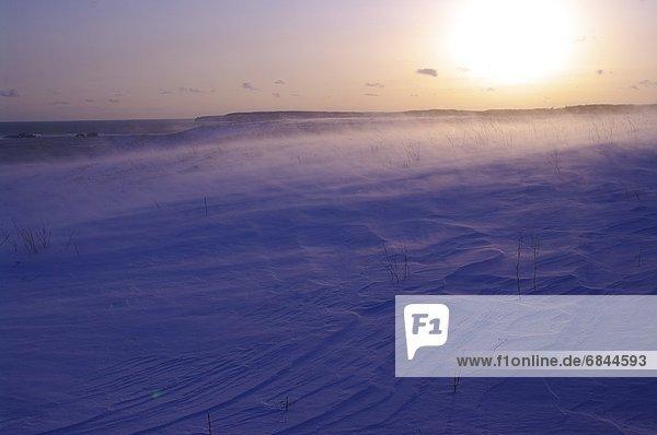 Tischset  dahintreibend  Japan  Schnee  Sonne