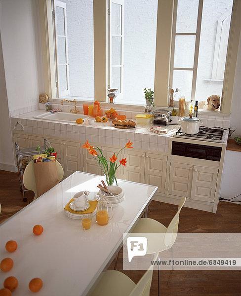 Kitchen with oranges  orange juice and orange flowers