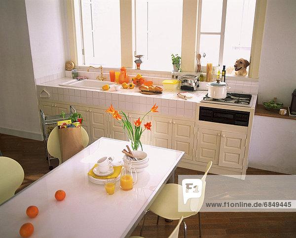 Küche 02 Themen