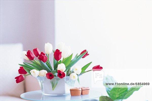 Blumenstrauß Strauß Fenster weiß rot Tulpe