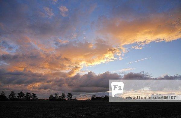 Ländliches Motiv  ländliche Motive  Europa  Schönheit  Sonnenuntergang  über  Zimmer  Niederlande