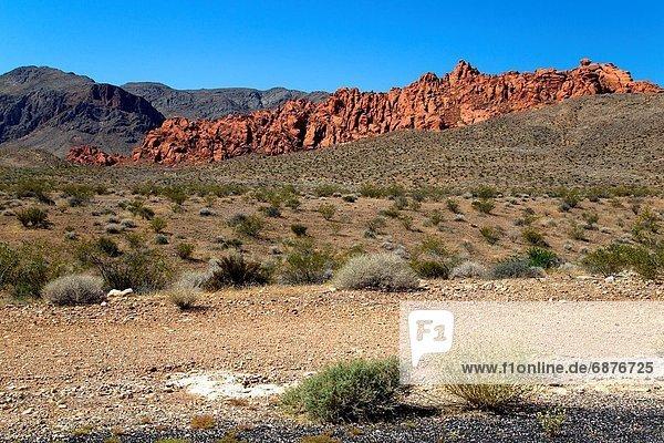 Vereinigte Staaten von Amerika  USA  Tal  Anordnung  Sand  Feuer  rot  Form  Formen  Lebensphase  Name  Dinosaurier  groß  großes  großer  große  großen  Düne  Wandel  Sandstein