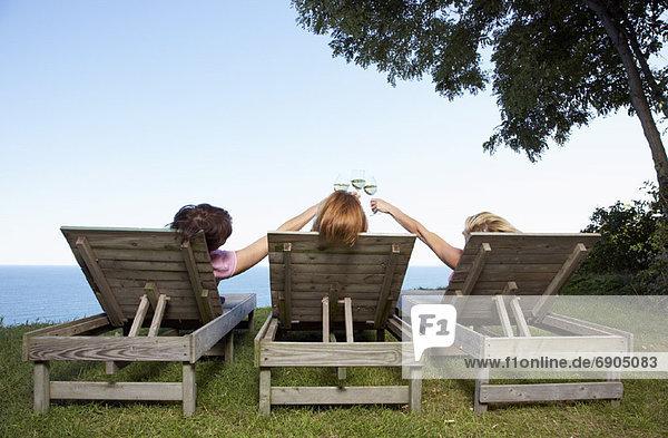 Außenaufnahme sitzend Frau Wein trinken freie Natur