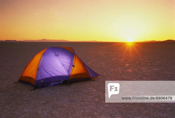 Vereinigte Staaten von Amerika  USA  Sonnenuntergang  Wüste  Zelt  Nevada