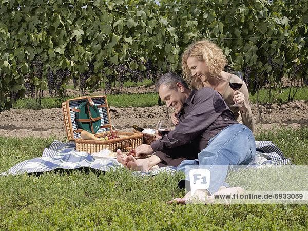 Fröhlichkeit  Picknick