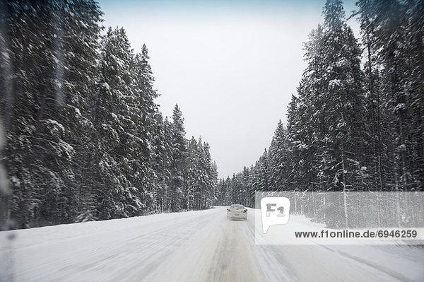 Highway 1A in Winter  Alberta  Canada