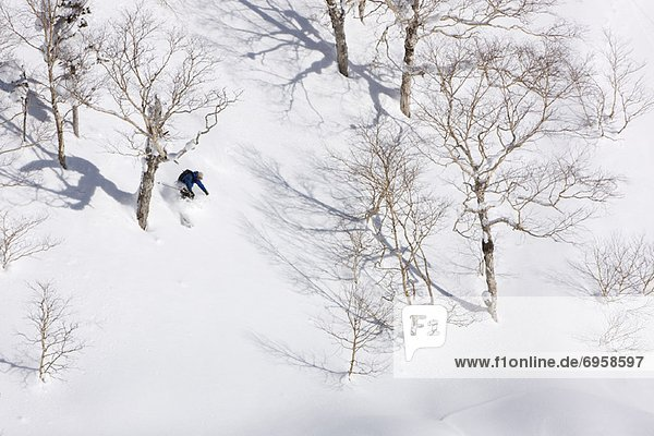 Telemark  Furano  Hokkaido  Japan