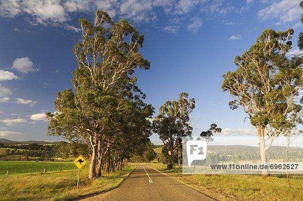 Victoria  Australien