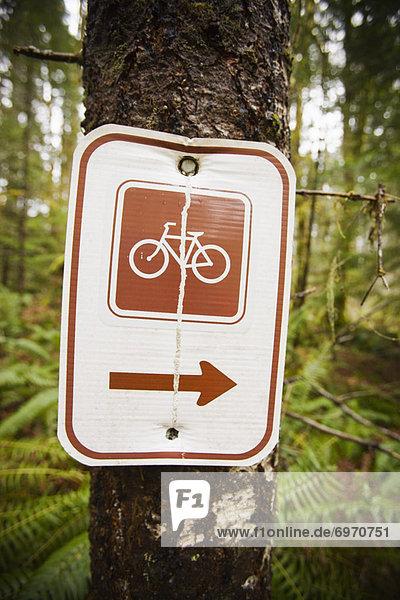 Vereinigte Staaten von Amerika  USA  Berg  folgen  radfahren  Zeichen  Oregon  Signal