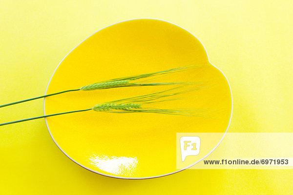 Essgeschirr  gelb  blau  Weizen