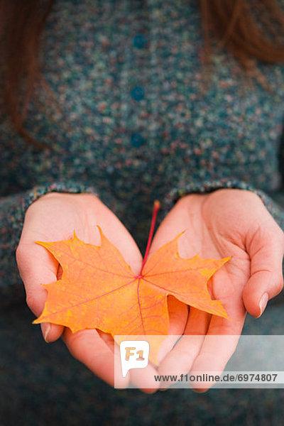 Vereinigte Staaten von Amerika USA Biegung Biegungen Kurve Kurven gewölbt Bogen gebogen Frau Pflanzenblatt Pflanzenblätter Blatt halten Close-up close-ups close up close ups