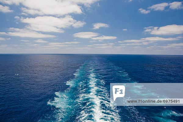 Horizont  Schiff  Kreuzfahrtschiff  Kielwasser